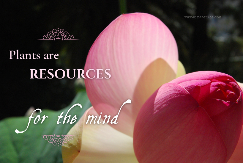 plants-are-resources-for-the-mind