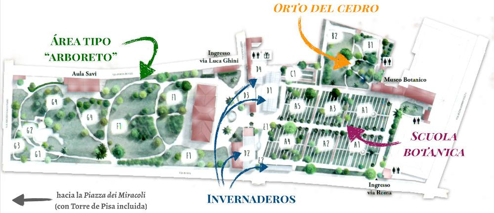 Mapa del Orto botanico di Pisa